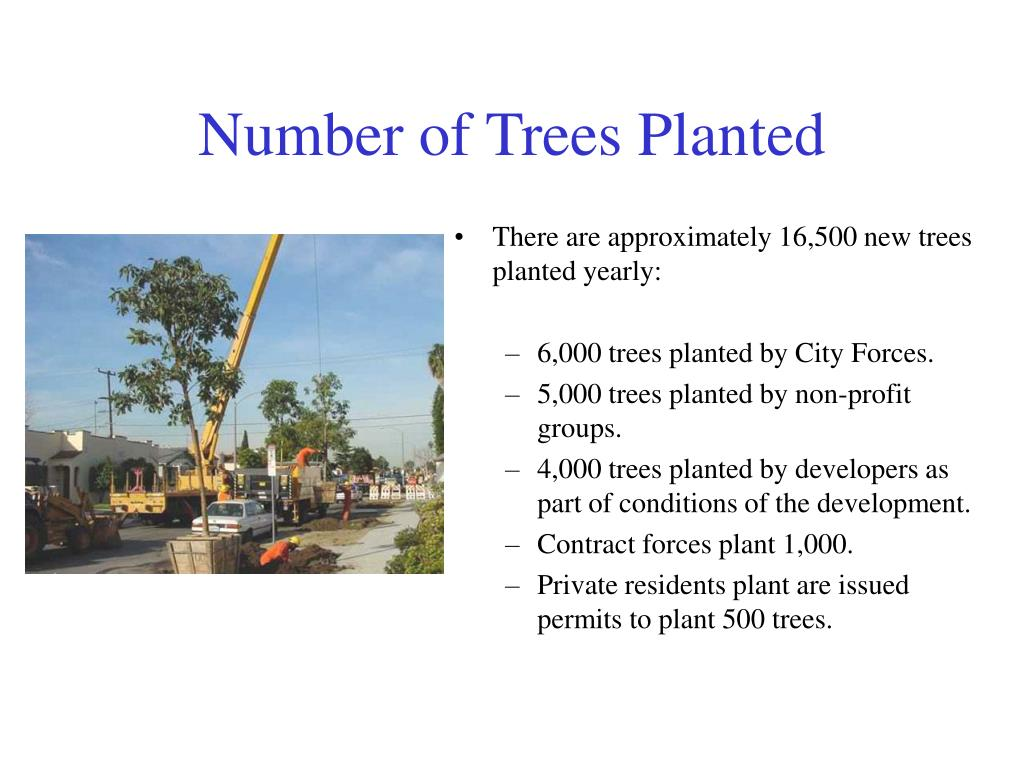 Number of Trees Planted