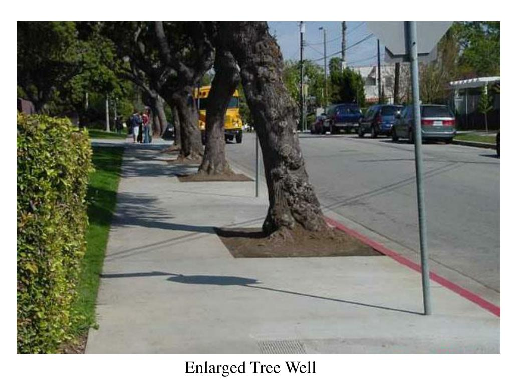 Enlarged Tree Well