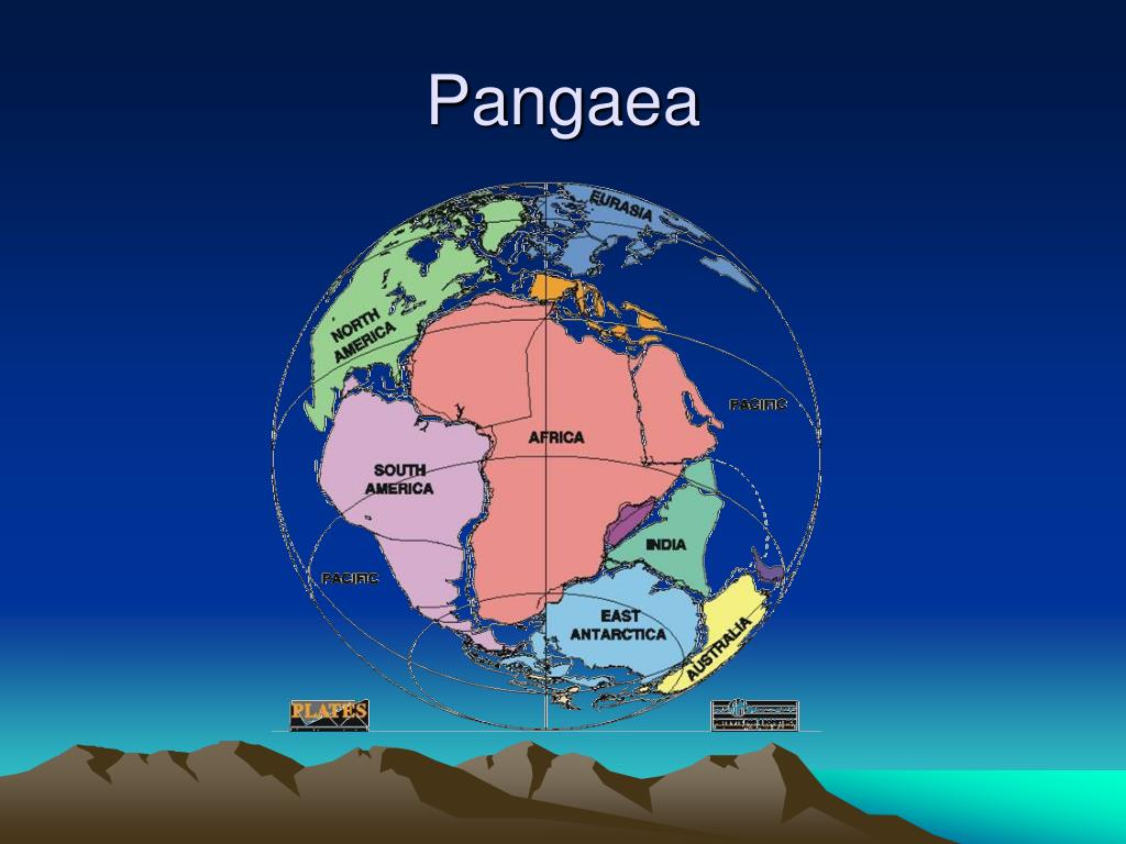 pangaea theory Is the earth expanding, or drifting apart as held by the pangaea theoryneal adams proposes that there was a pangaea super-continent in the past, but that the change to.