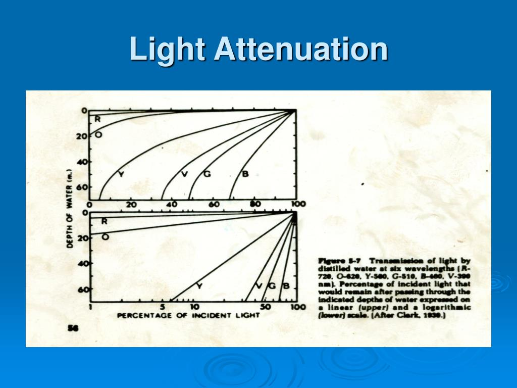 Light Attenuation