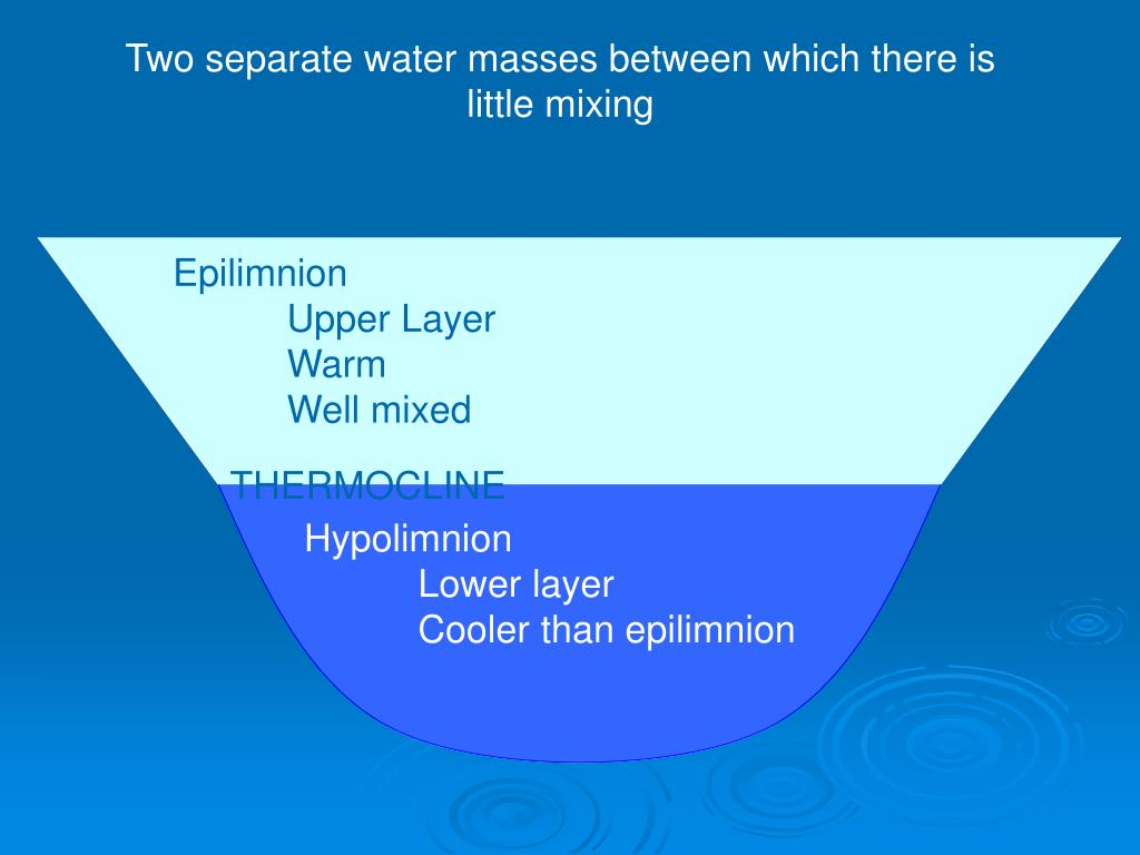 Two separate water masses between which there is little mixing
