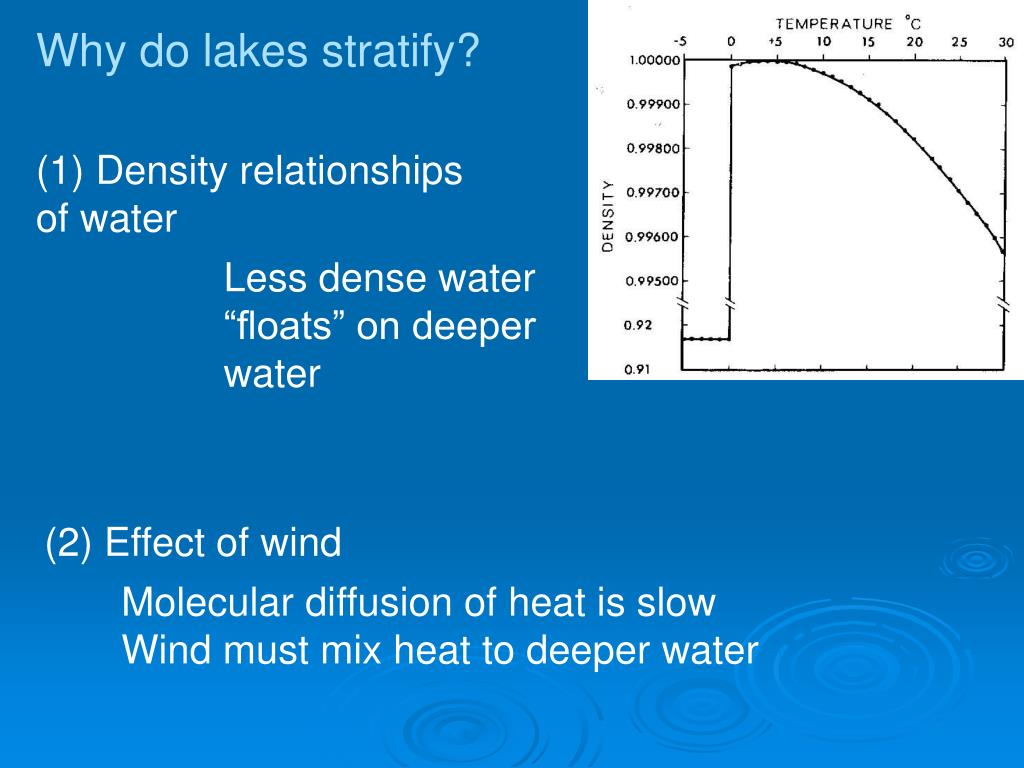 Why do lakes stratify?