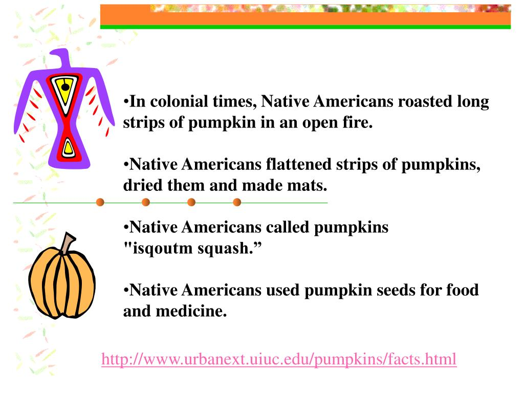 In colonial times, Native Americans roasted long strips of pumpkin in an open fire.