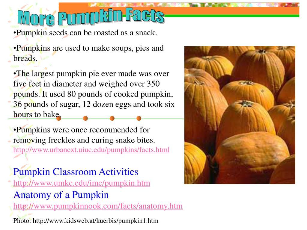 More Pumpkin Facts