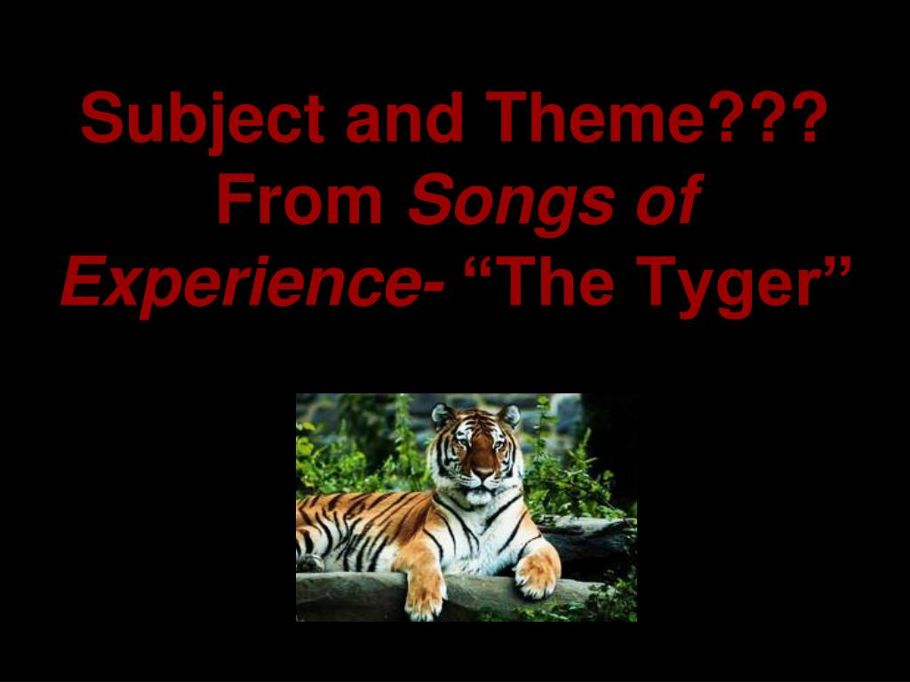 the shared themes in the poem the lamb and the tyger by william blake View songs of innocence and experience research  just as he did with regard to  the lamb  and  the tyger  and formulated  these two poems of william blake,.
