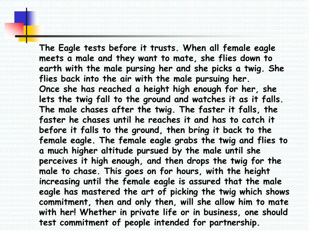 The Eagle tests before it trusts. When all female eagle meets a male and they want to mate, she flies down to earth with the male pursing her and she picks a twig. She flies back into the air with the male pursuing her.