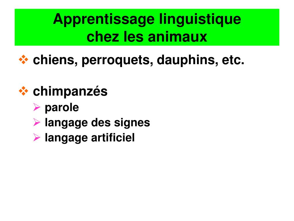 Apprentissage linguistique