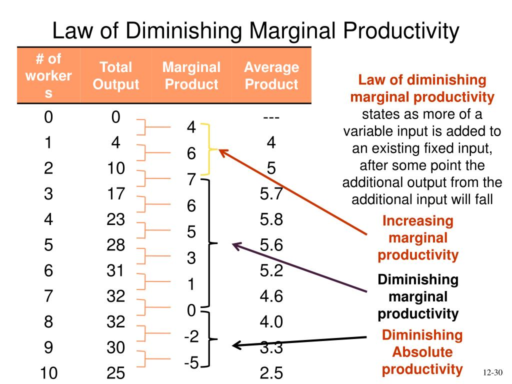 what is the law of diminishing marginal productivity