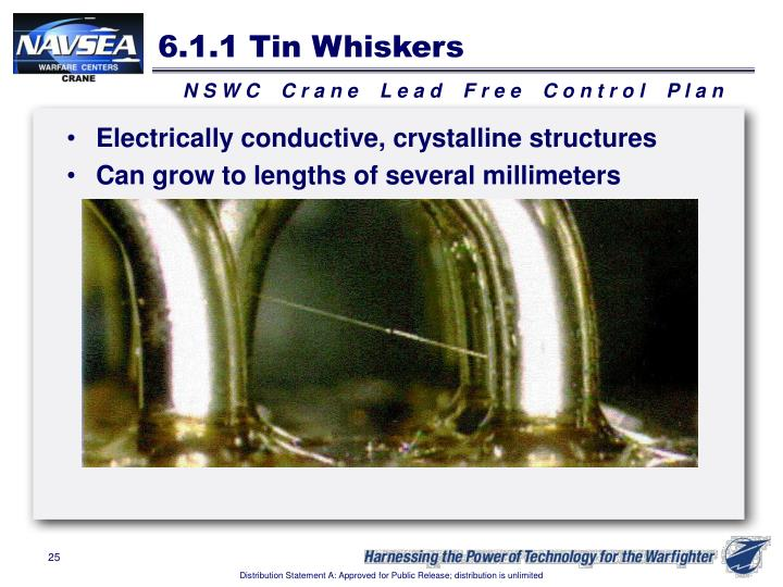 6.1.1 Tin Whiskers