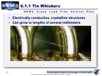 6 1 1 tin whiskers