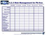 6 2 3 risk management for pb free1