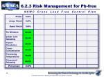 6 2 3 risk management for pb free2