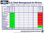 6 2 3 risk management for pb free3