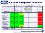 6 2 3 risk management for pb free5