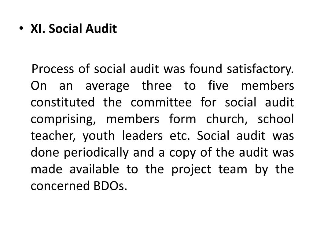 XI. Social Audit