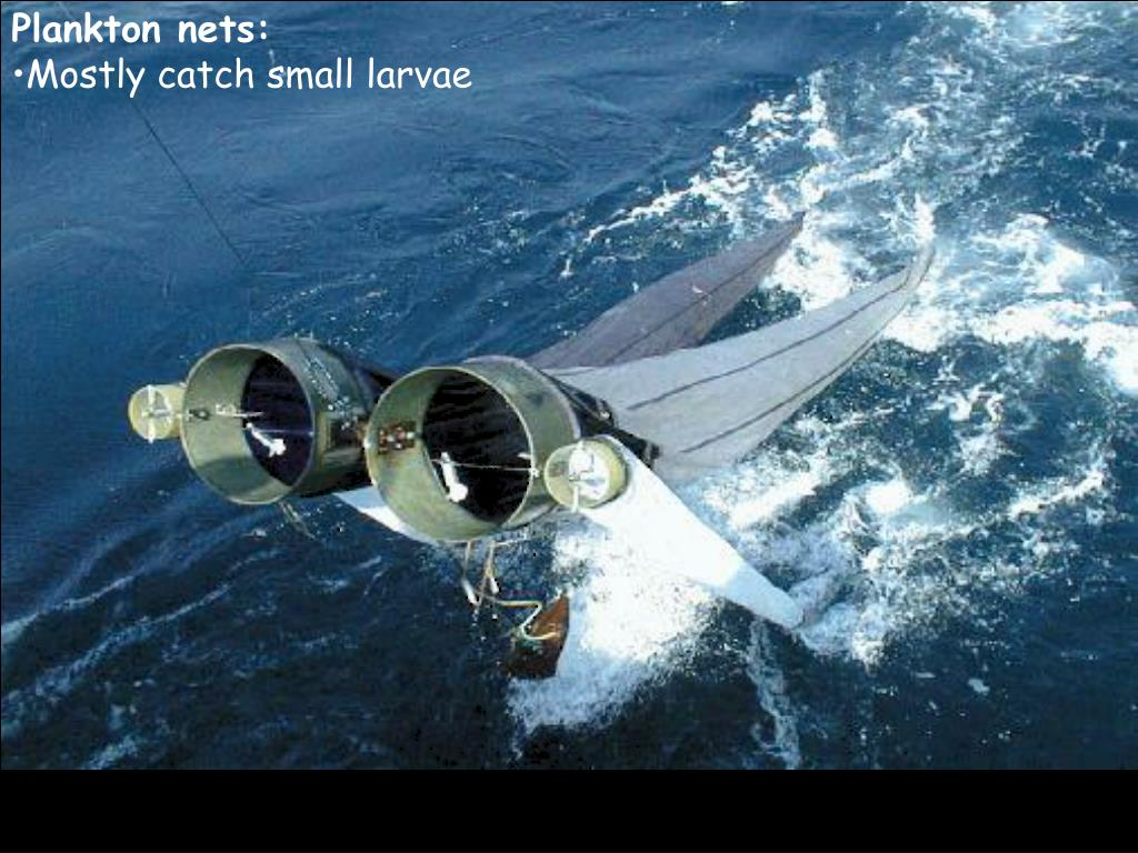 Plankton nets: