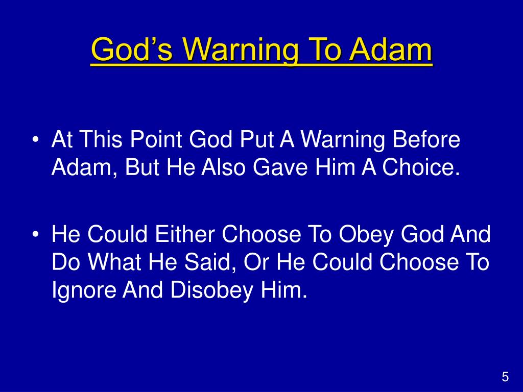 God's Warning To Adam