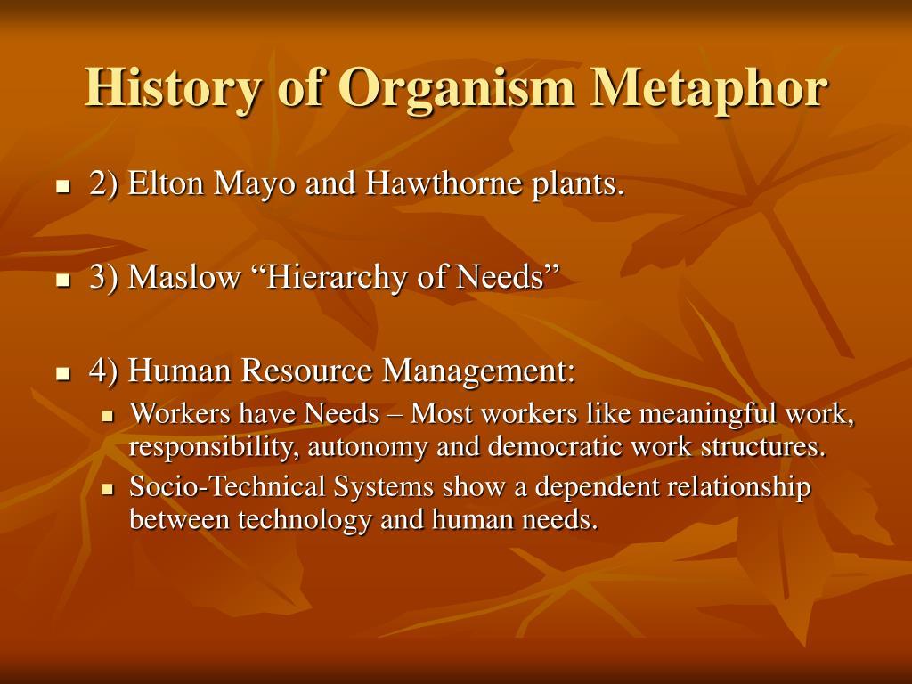 History of Organism Metaphor