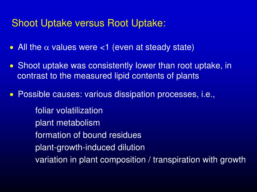 Shoot Uptake versus Root Uptake: