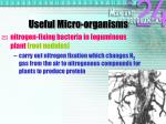 useful micro organisms4