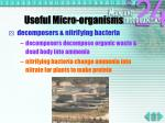 useful micro organisms5