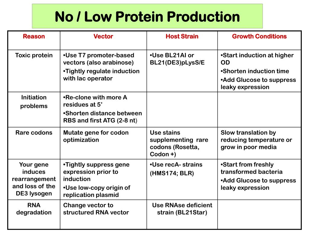 No / Low Protein Production