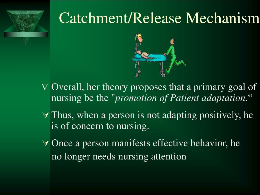 Catchment/Release Mechanism