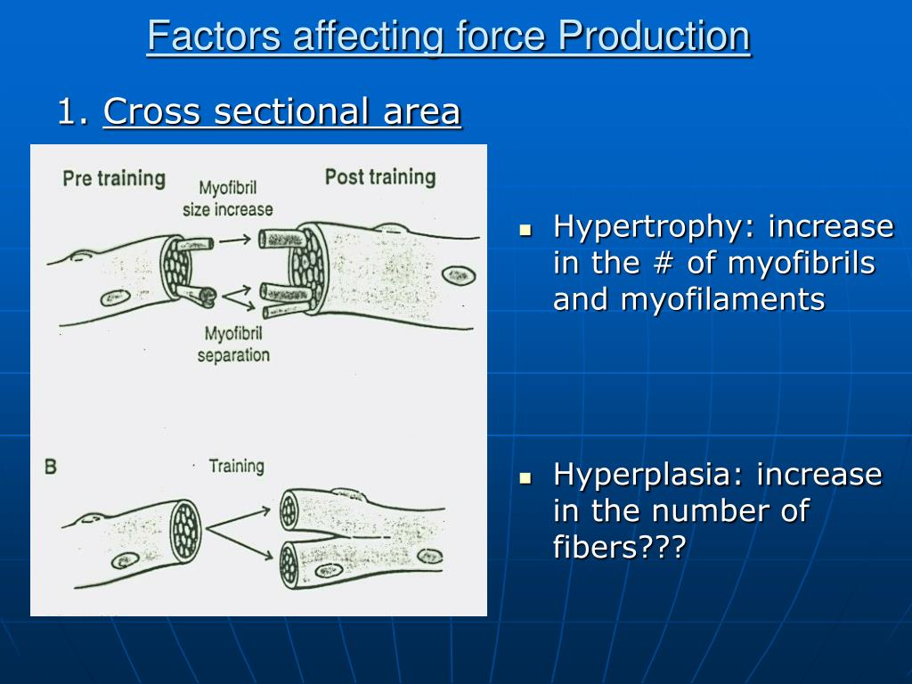 1. Cross-sectional area