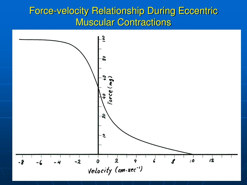 Force-velocity Relationship During Eccentric Muscular Contractions