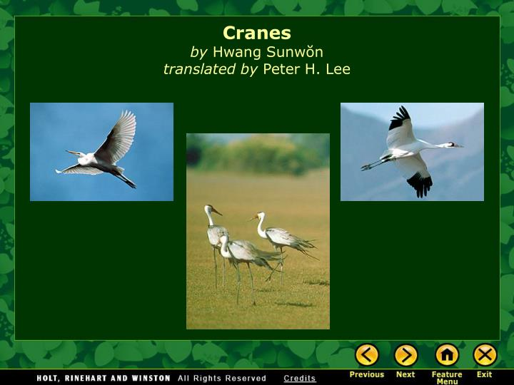 Cranes by Hwang Sunwon translated by Peter H. Lee - PowerPoint PPT Presentation