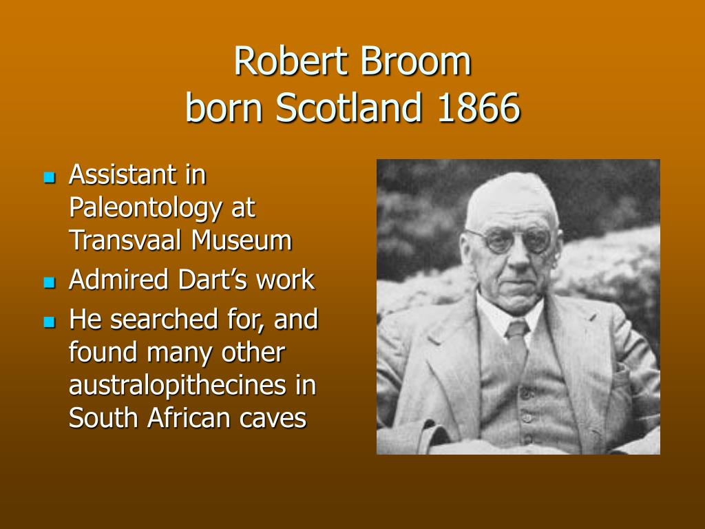 Robert Broom