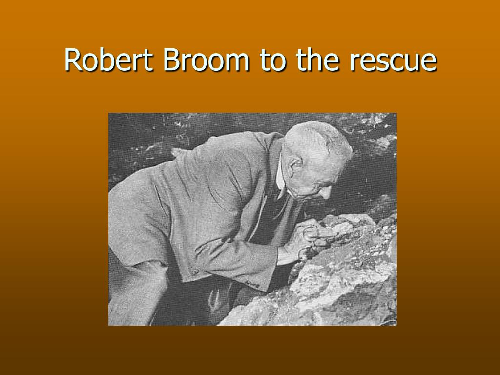 Robert Broom to the rescue