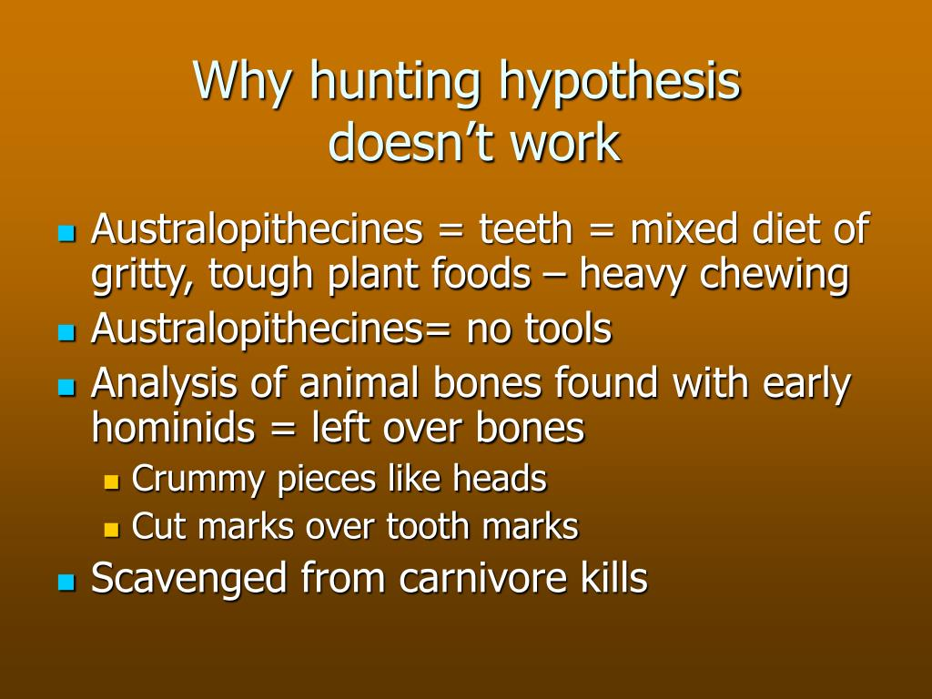 Why hunting hypothesis
