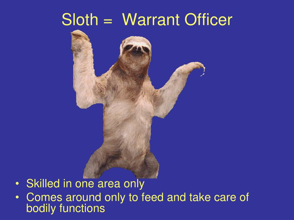 Sloth =  Warrant Officer