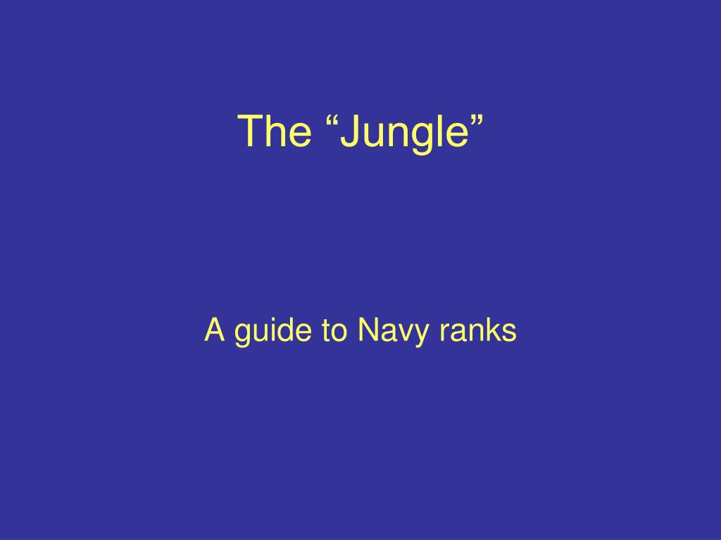 "The ""Jungle"""