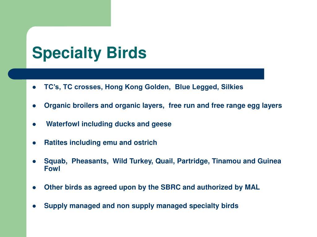 Specialty Birds