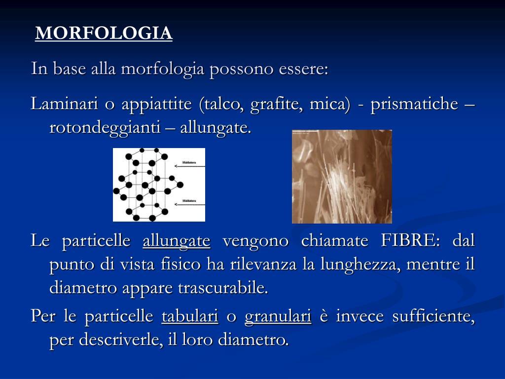 In base alla morfologia possono essere: