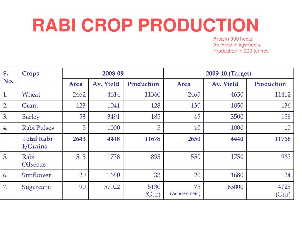 RABI CROP PRODUCTION