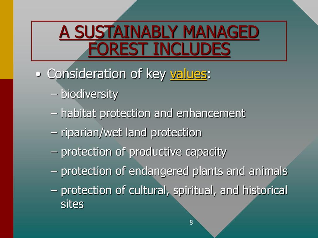 A SUSTAINABLY MANAGED FOREST INCLUDES