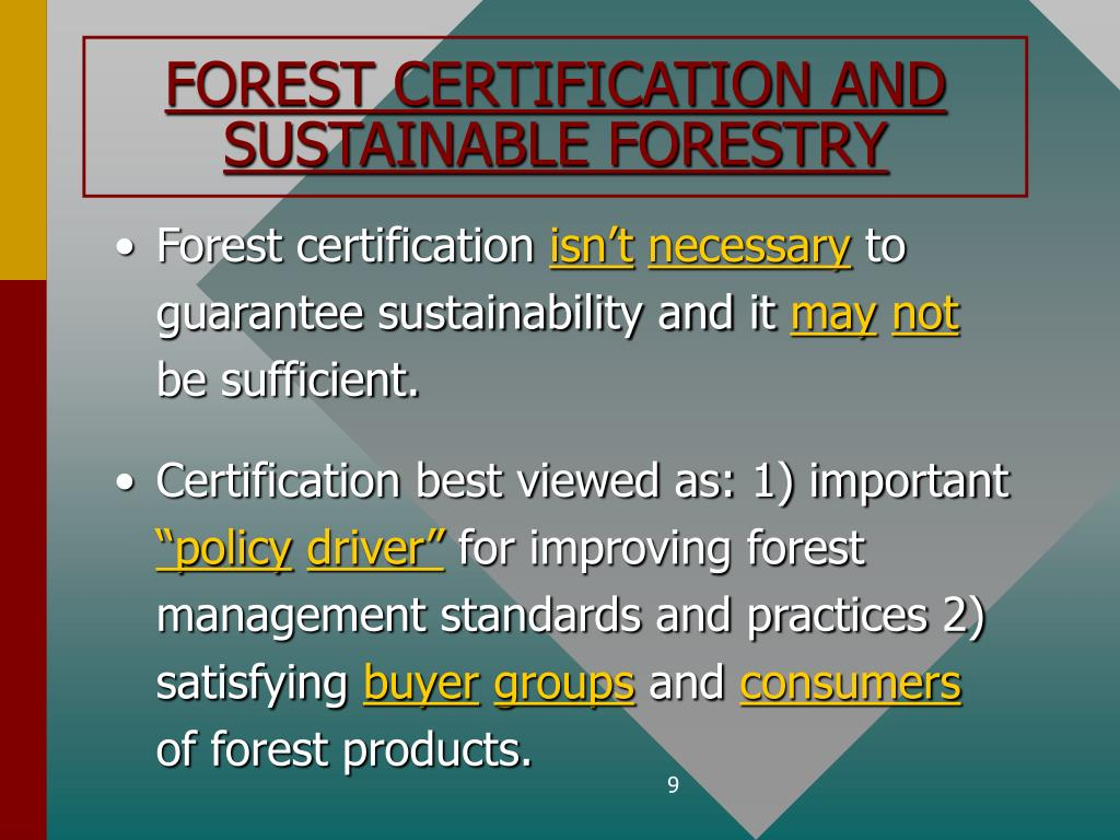 FOREST CERTIFICATION AND SUSTAINABLE FORESTRY