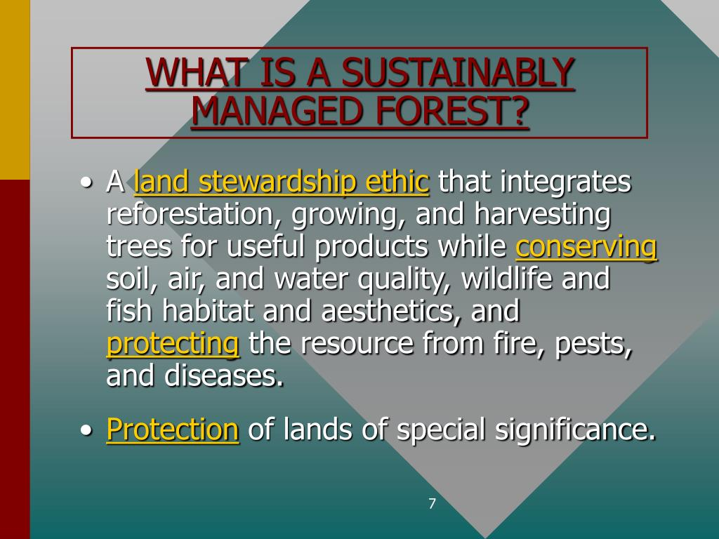 WHAT IS A SUSTAINABLY MANAGED FOREST?