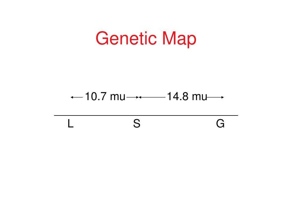 Genetic Map