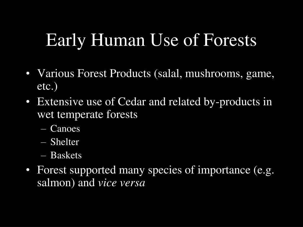 Early Human Use of Forests