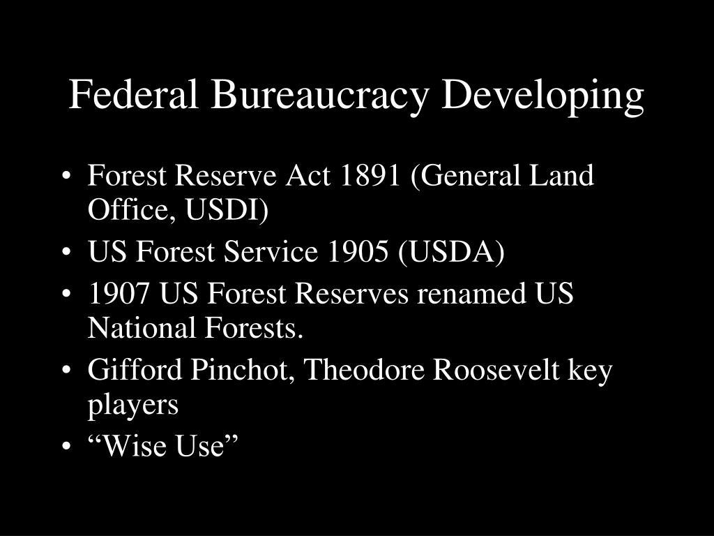 Federal Bureaucracy Developing