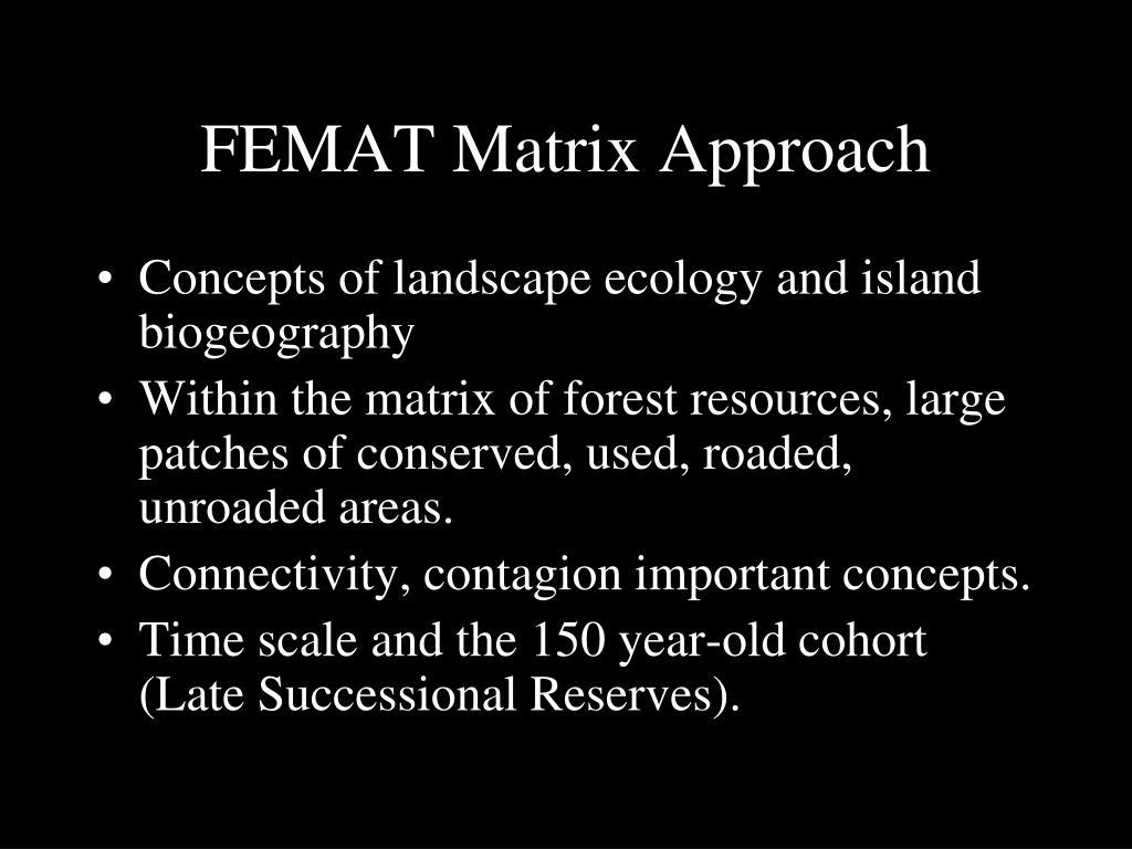FEMAT Matrix Approach