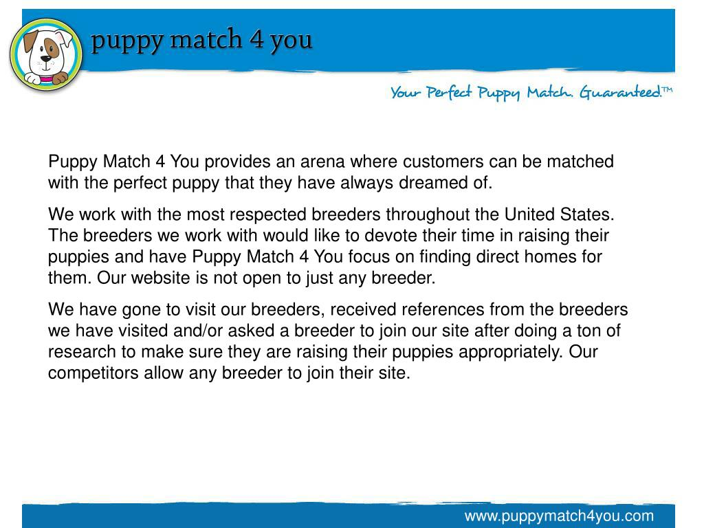 Puppy Match 4 You provides an arena where customers can be matched with the perfect puppy that they have always dreamed of.