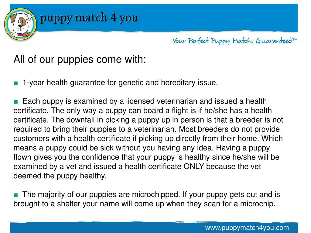 All of our puppies come with: