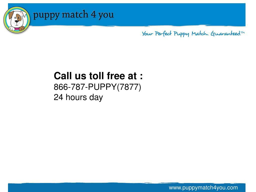 Call us toll free at :