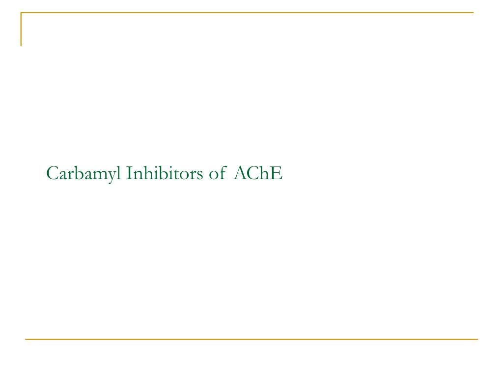 Carbamyl Inhibitors of AChE