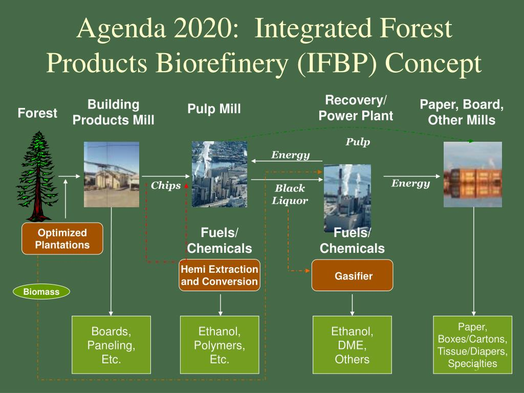 Agenda 2020:  Integrated Forest Products Biorefinery (IFBP) Concept